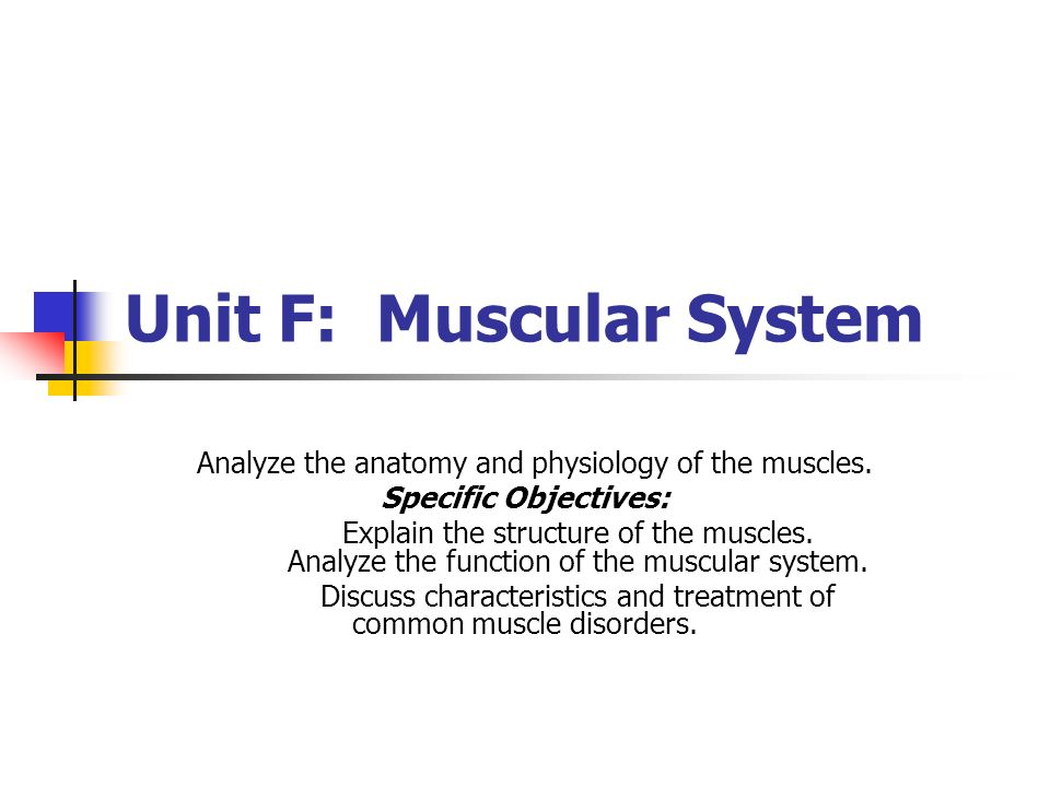 Unit F: Muscular System Analyze the anatomy and physiology of the muscles. Specific Objectives: Explain the structure of the muscles. Analyze the func