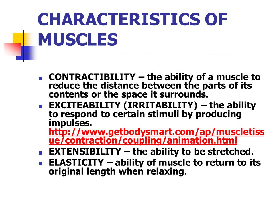 CHARACTERISTICS OF MUSCLES CONTRACTIBILITY – the ability of a muscle to reduce the distance between the parts of its contents or the space it surround