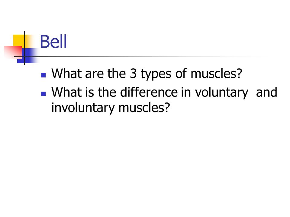 Bell What are the 3 types of muscles? What is the difference in voluntary and involuntary muscles?