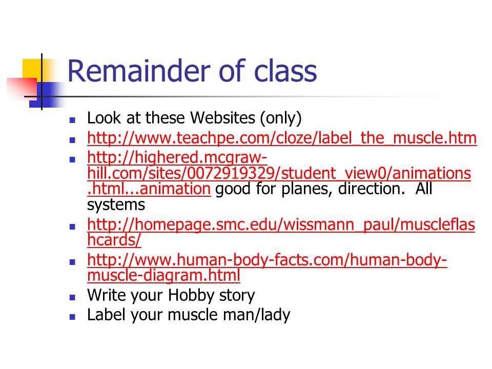 Remainder of class Look at these Websites (only) http://www.teachpe.com/cloze/label_the_muscle.htm http://highered.mcgraw- hill.com/sites/0072919329/s