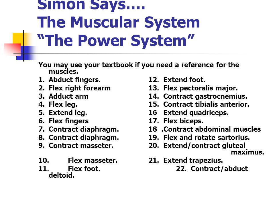 Simon Says…. The Muscular System The Power System You may use your textbook if you need a reference for the muscles. 1.Abduct fingers.12. Extend foot.