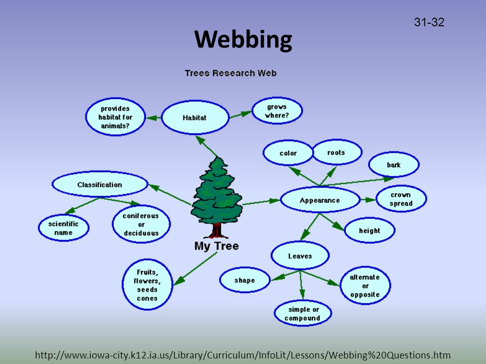 Webbing http://www.iowa-city.k12.ia.us/Library/Curriculum/InfoLit/Lessons/Webbing%20Questions.htm 31-32