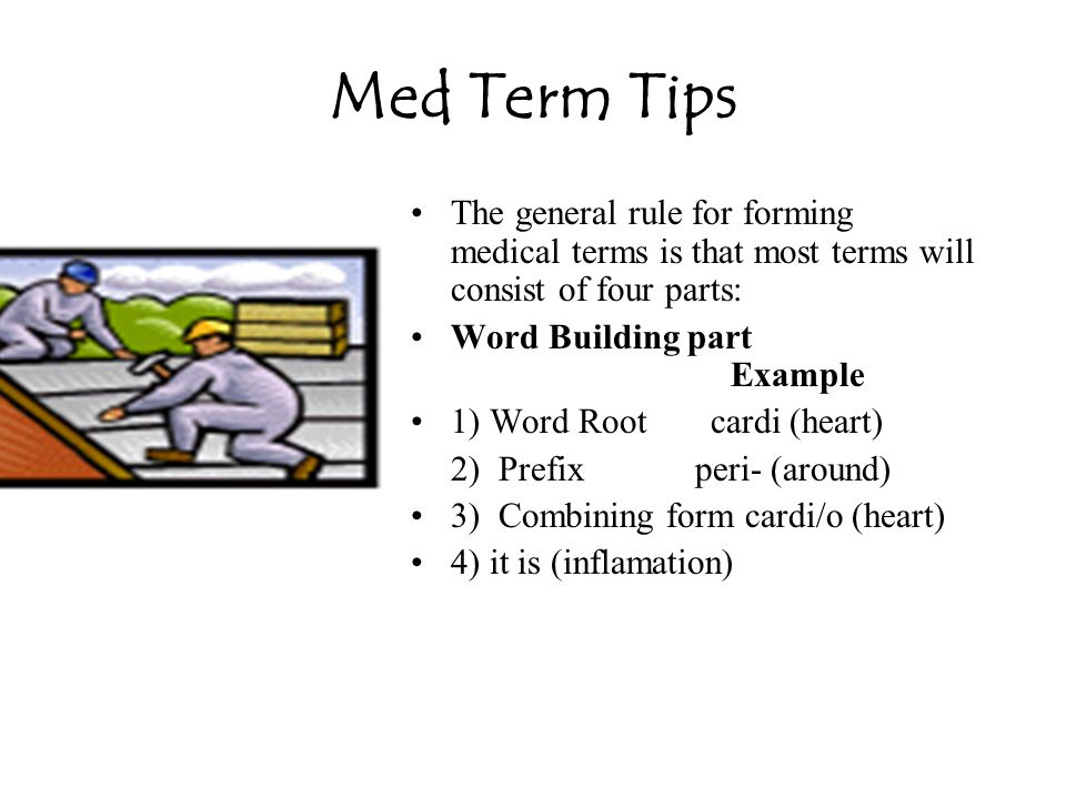 Med Term Tip Ileum (ILL ee um), which means a part of the small intestine, is pronounced the same as the word ilium, which is a part of the hip bone.