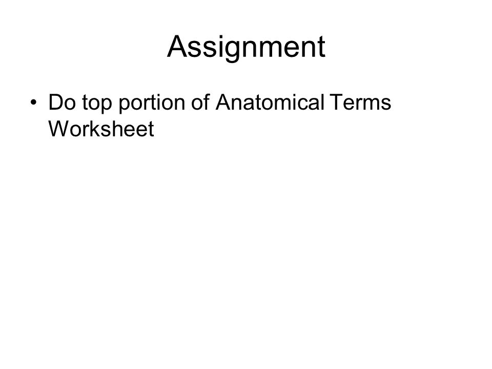 Assignment Do top portion of Anatomical Terms Worksheet