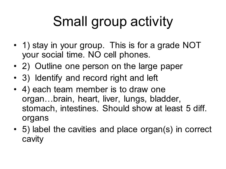 Small group activity 1) stay in your group. This is for a grade NOT your social time. NO cell phones. 2) Outline one person on the large paper 3) Iden
