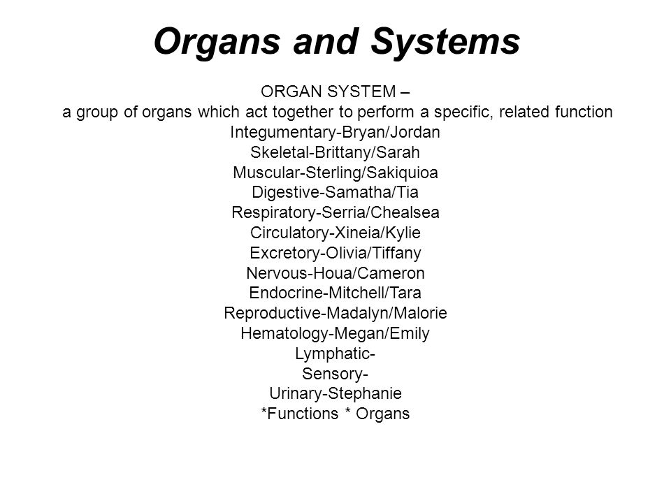 ORGAN SYSTEM – a group of organs which act together to perform a specific, related function Integumentary-Bryan/Jordan Skeletal-Brittany/Sarah Muscula