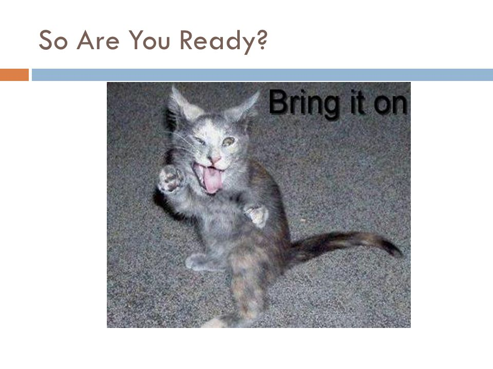 So Are You Ready?