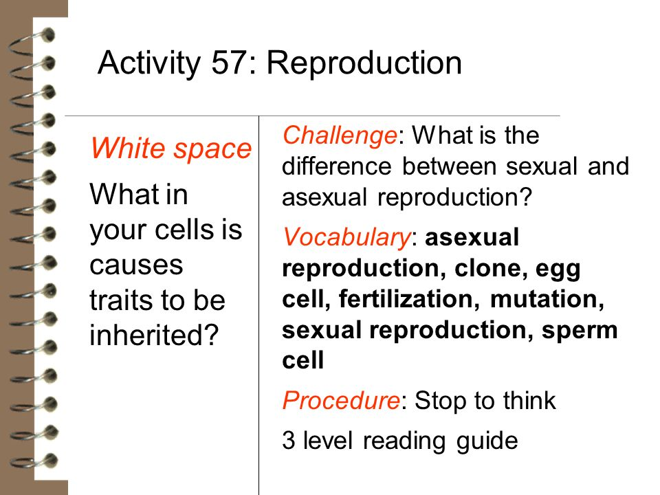 Activity 57: Reproduction White space What in your cells is causes traits to be inherited? Challenge: What is the difference between sexual and asexua