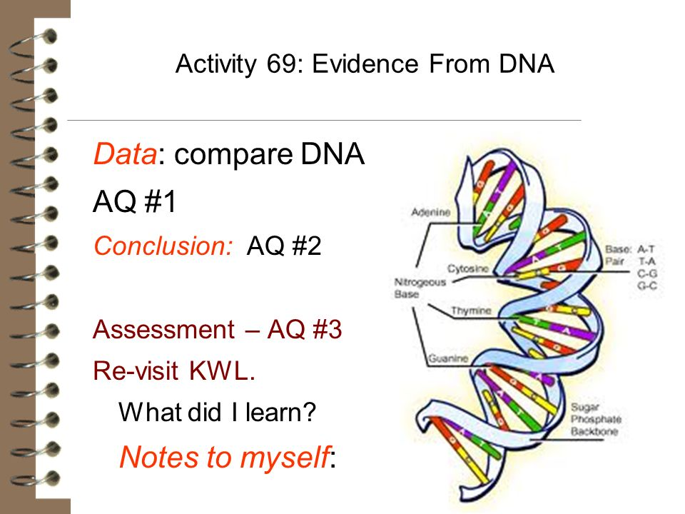 Activity 69: Evidence From DNA Data: compare DNA AQ #1 Conclusion: AQ #2 Assessment – AQ #3 Re-visit KWL. What did I learn? Notes to myself: