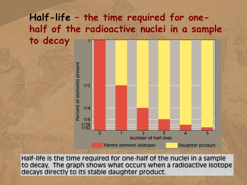 Half-life – the time required for one- half of the radioactive nuclei in a sample to decay