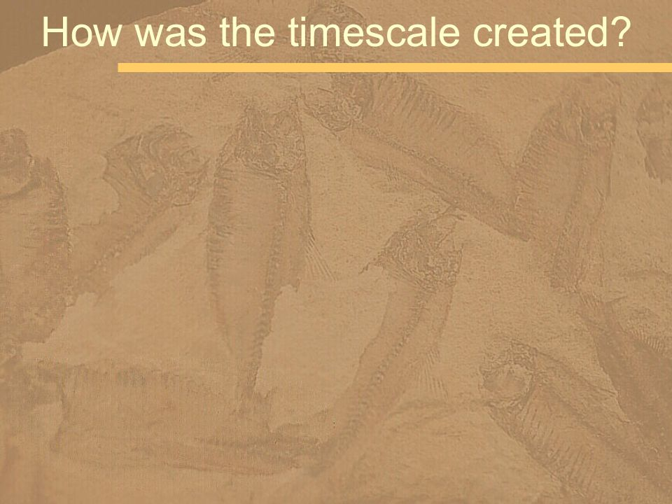 How was the timescale created?