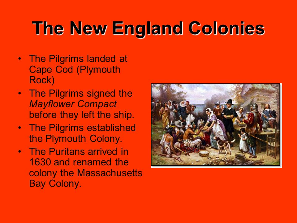 The New England Colonies The Pilgrims landed at Cape Cod (Plymouth Rock) The Pilgrims signed the Mayflower Compact before they left the ship. The Pilg