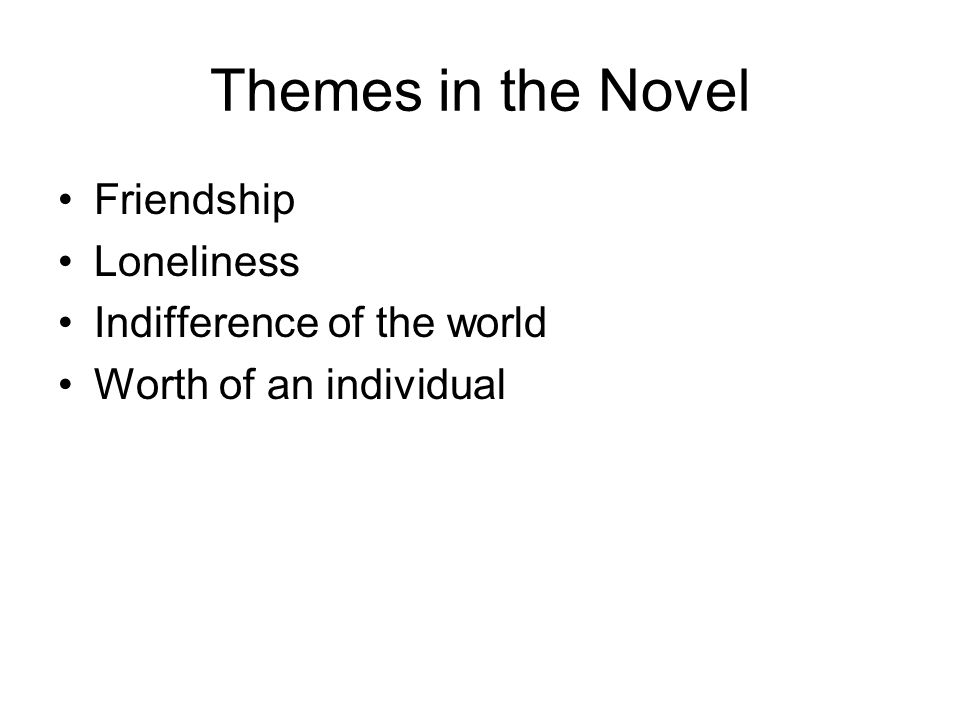 Themes in the Novel Friendship Loneliness Indifference of the world Worth of an individual