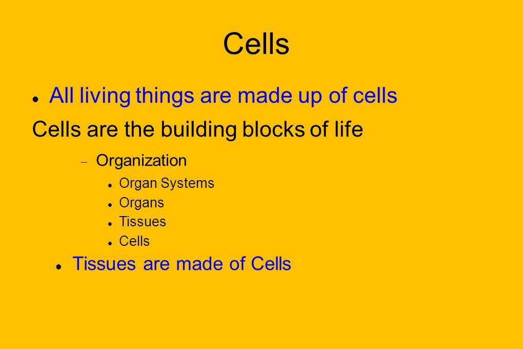 All living things are made up of cells Cells are the building blocks of life Organization Organ Systems Organs Tissues Cells Tissues are made of Cells