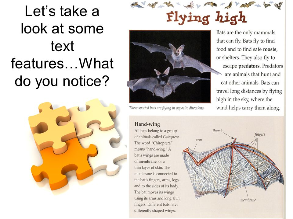 Lets take a look at some text features…What do you notice?