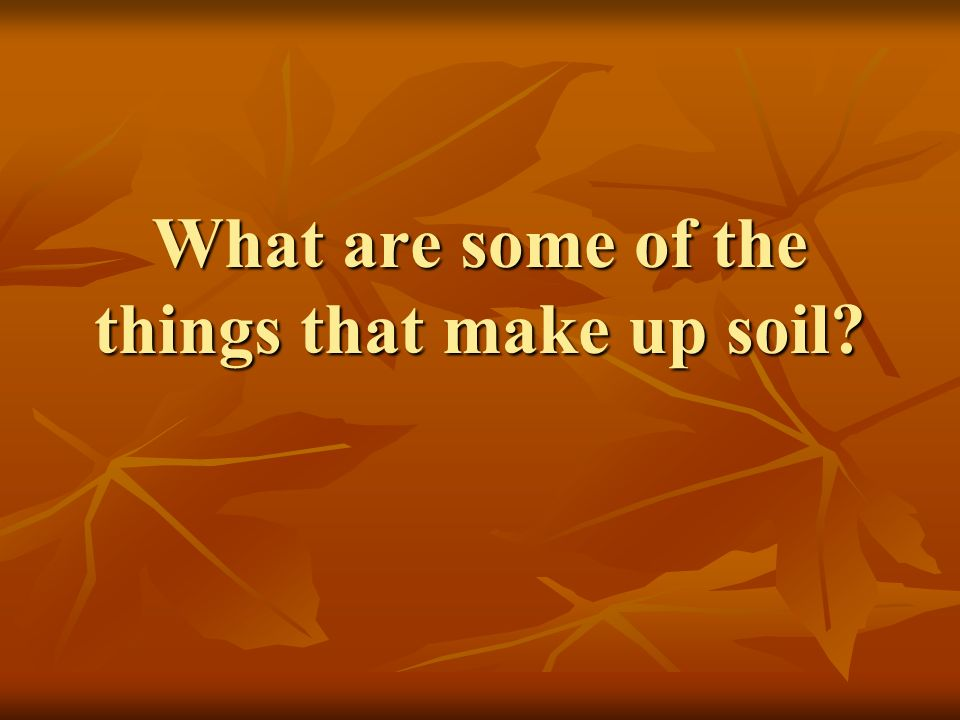 What are some of the things that make up soil?