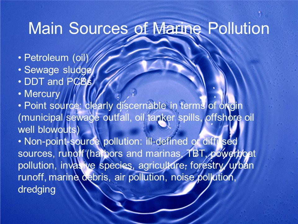 Main Sources of Marine Pollution Petroleum (oil) Sewage sludge DDT and PCBs Mercury Point source: clearly discernable in terms of origin (municipal se