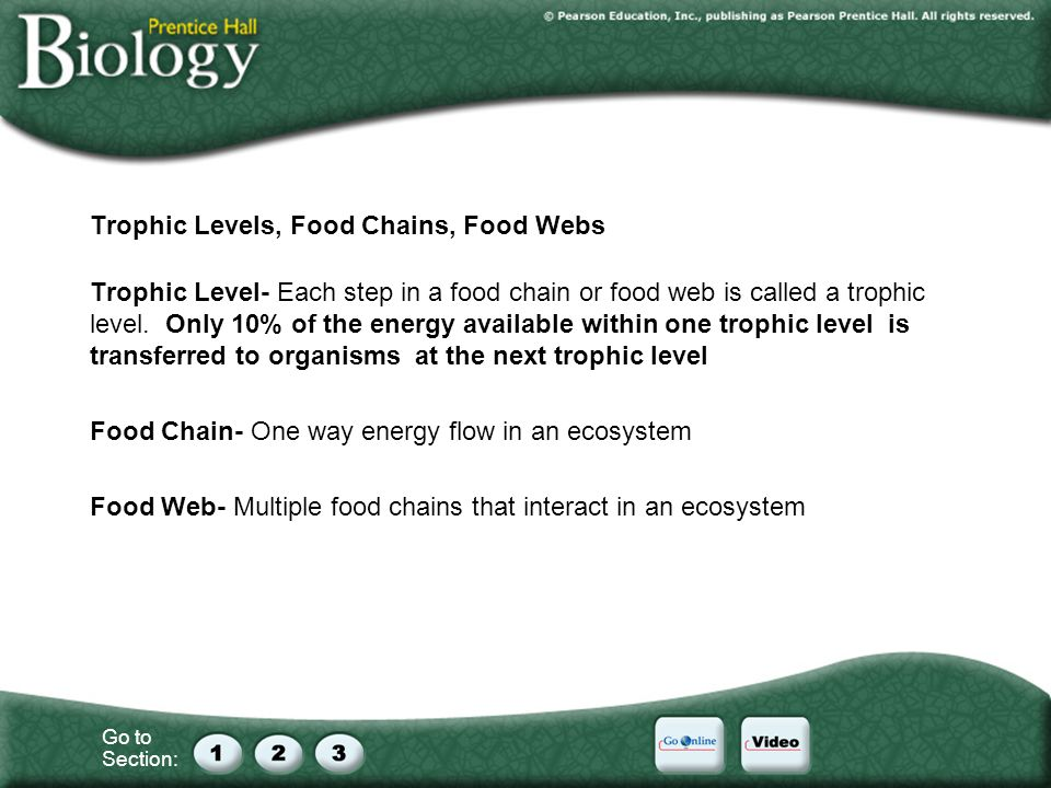 Go to Section: Trophic Levels, Food Chains, Food Webs Trophic Level- Each step in a food chain or food web is called a trophic level. Only 10% of the