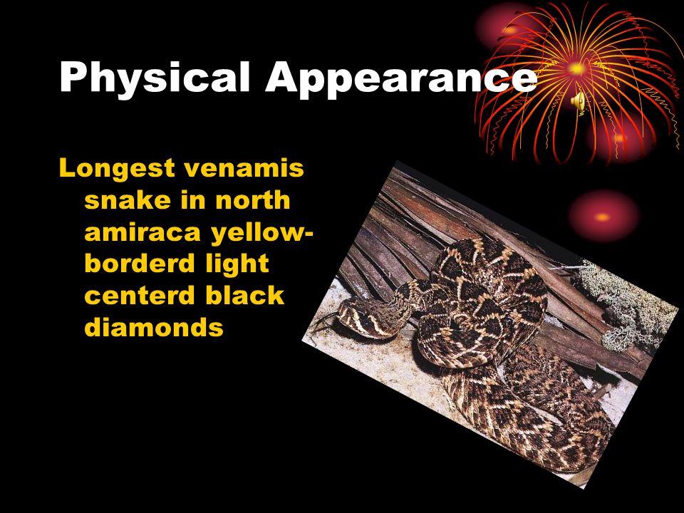 Physical Appearance Longest venamis snake in north amiraca yellow- borderd light centerd black diamonds