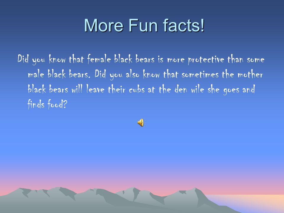 Fun facts! Females typically hibernate longer th an male black bears.