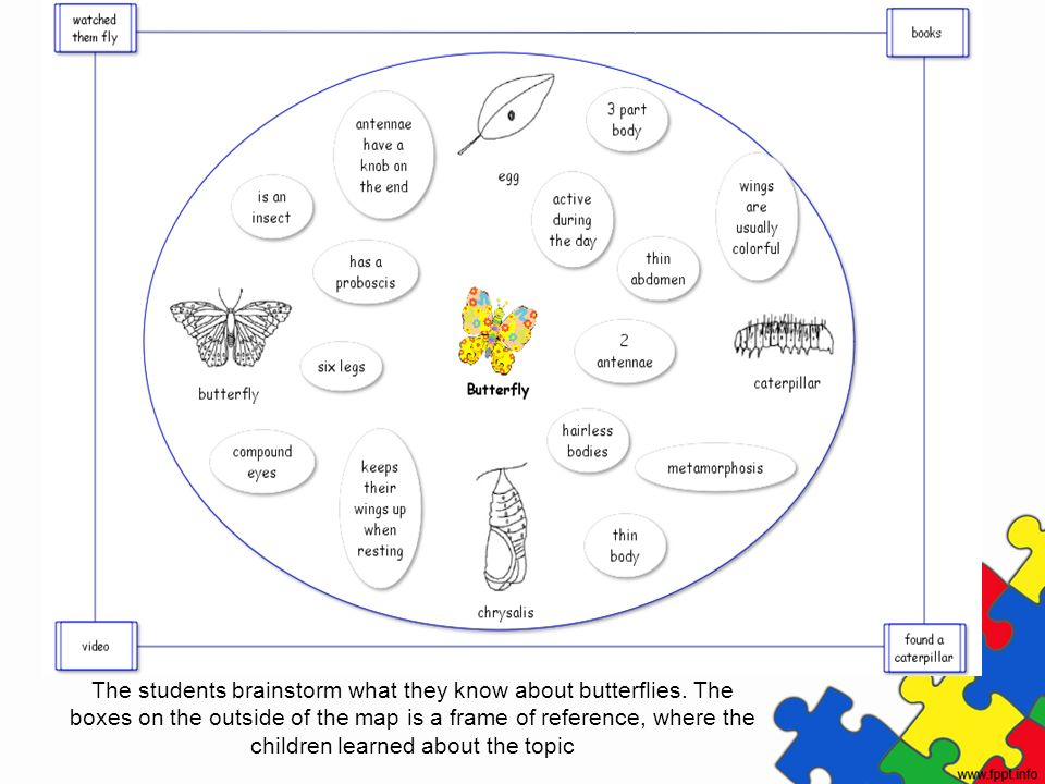 The students brainstorm what they know about butterflies. The boxes on the outside of the map is a frame of reference, where the children learned abou