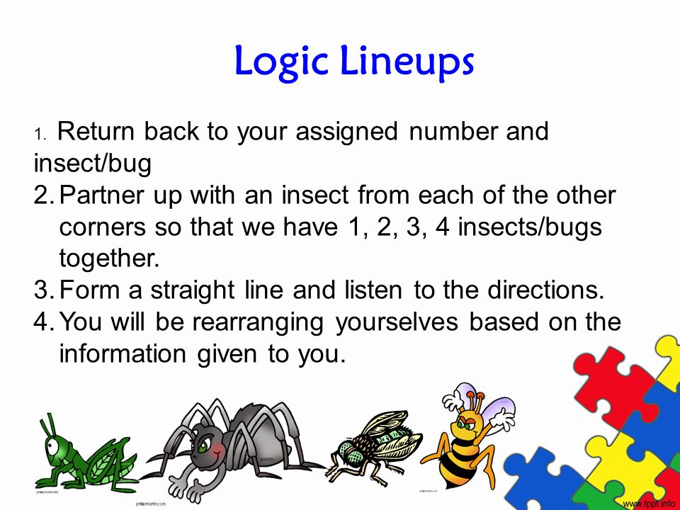 Logic Lineups 1. Return back to your assigned number and insect/bug 2.Partner up with an insect from each of the other corners so that we have 1, 2, 3