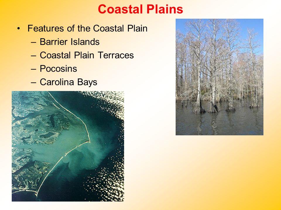 Coastal Plains Features of the Coastal Plain –Barrier Islands –Coastal Plain Terraces –Pocosins –Carolina Bays
