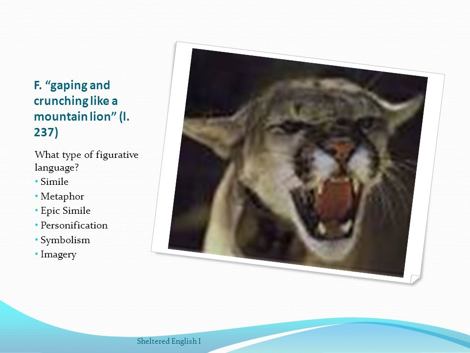 F. gaping and crunching like a mountain lion (l. 237) What type of figurative language? Simile Metaphor Epic Simile Personification Symbolism Imagery
