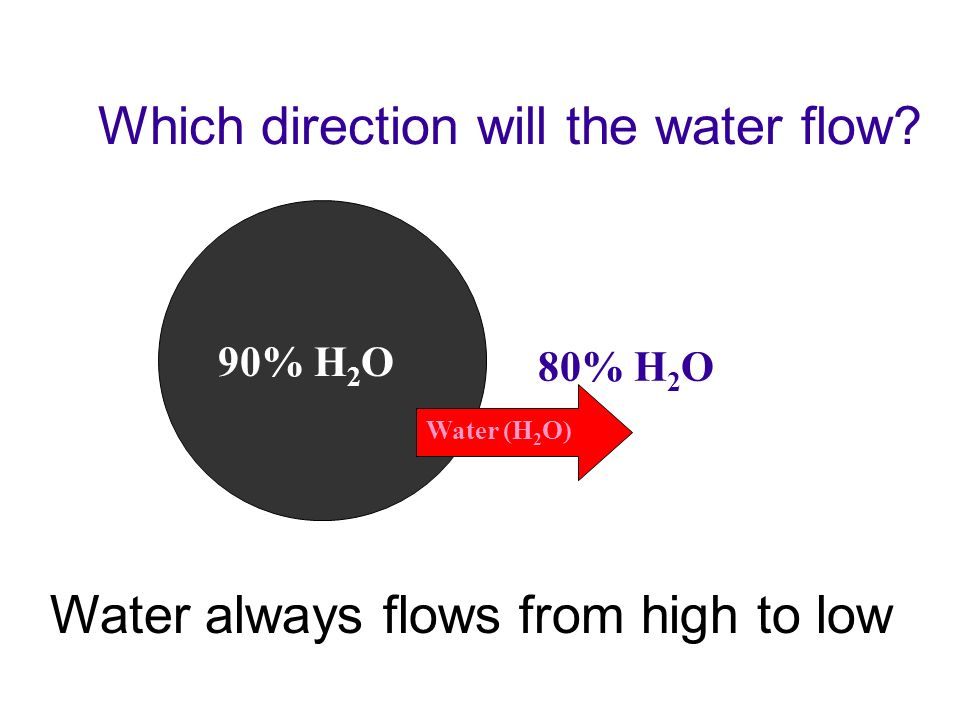 25% H 2 O 10% NaCl Which direction will the water flow? Change % NaCl to % water –osmosis is the movement of water through the plasma membrane 90% H 2