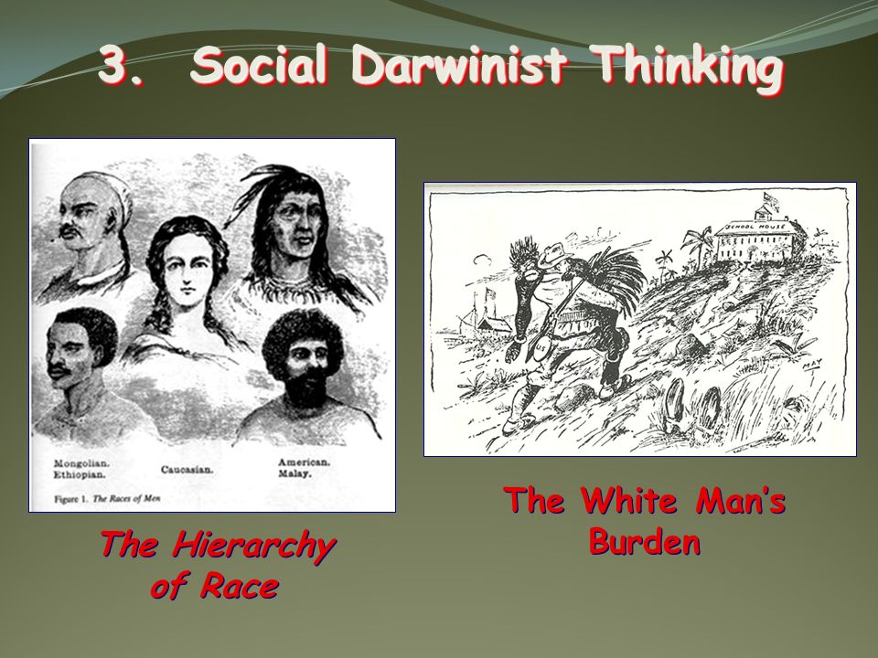 3. Social Darwinist Thinking The White Mans Burden The Hierarchy of Race