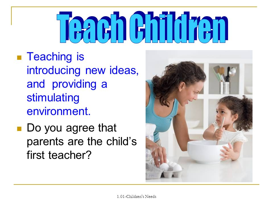 1.01-Children s Needs Teaching is introducing new ideas, and providing a stimulating environment.