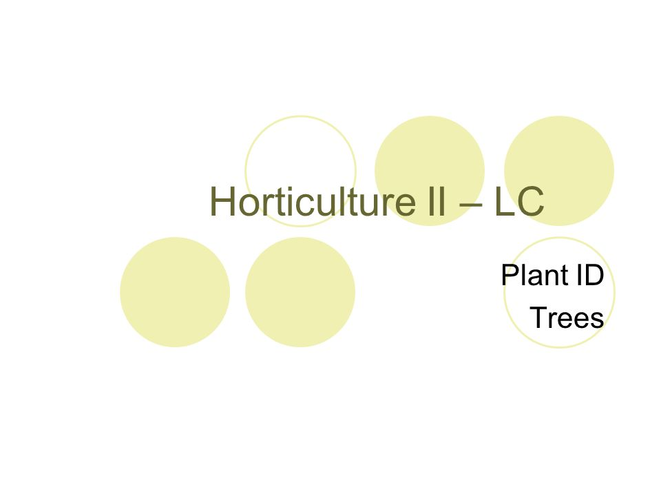 Horticulture II – LC Plant ID Trees