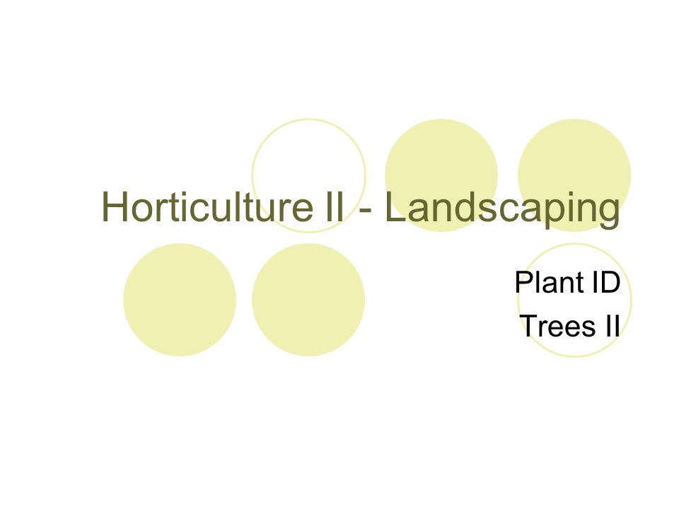 Horticulture II - Landscaping Plant ID Trees II