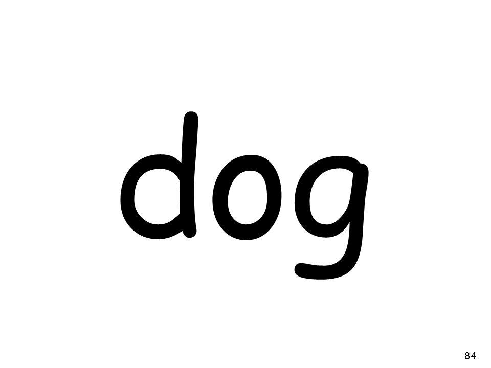 dog 84