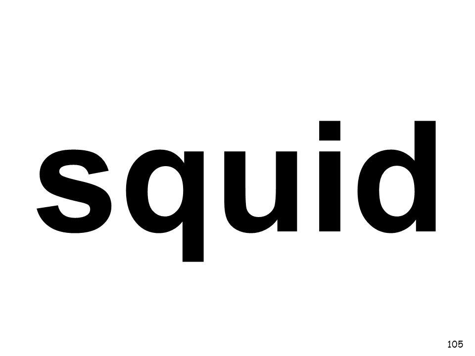 squid 105
