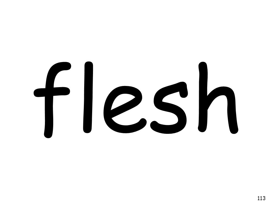 flesh 113