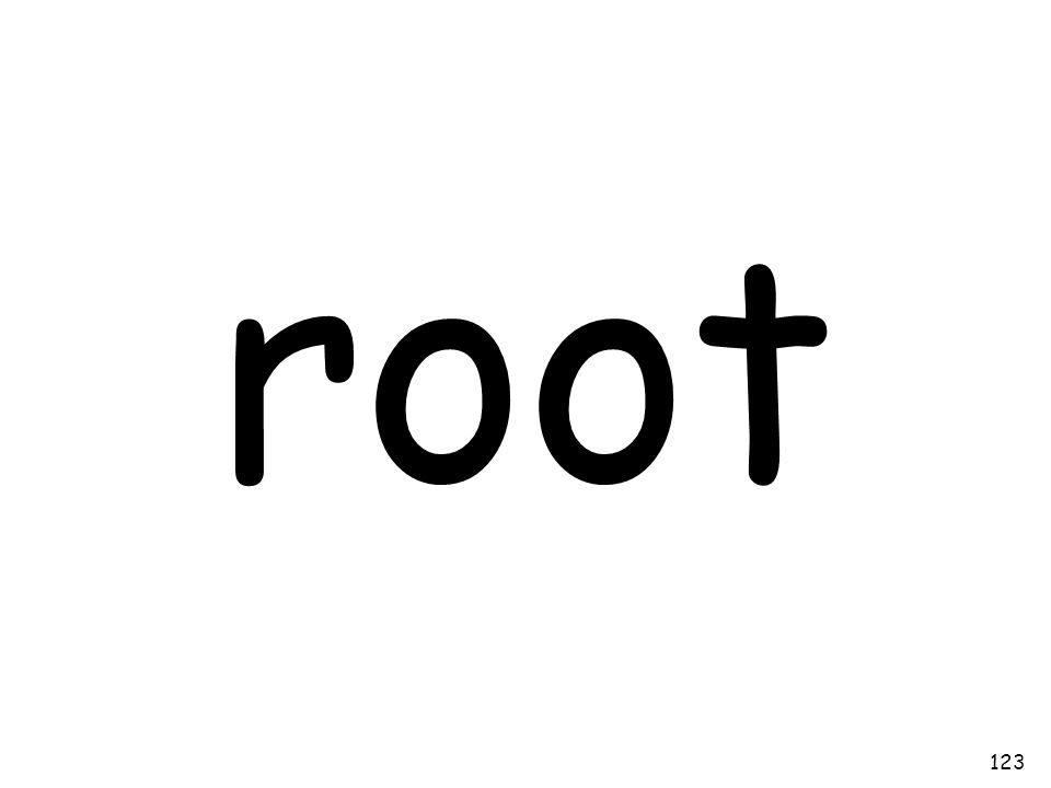 root 123