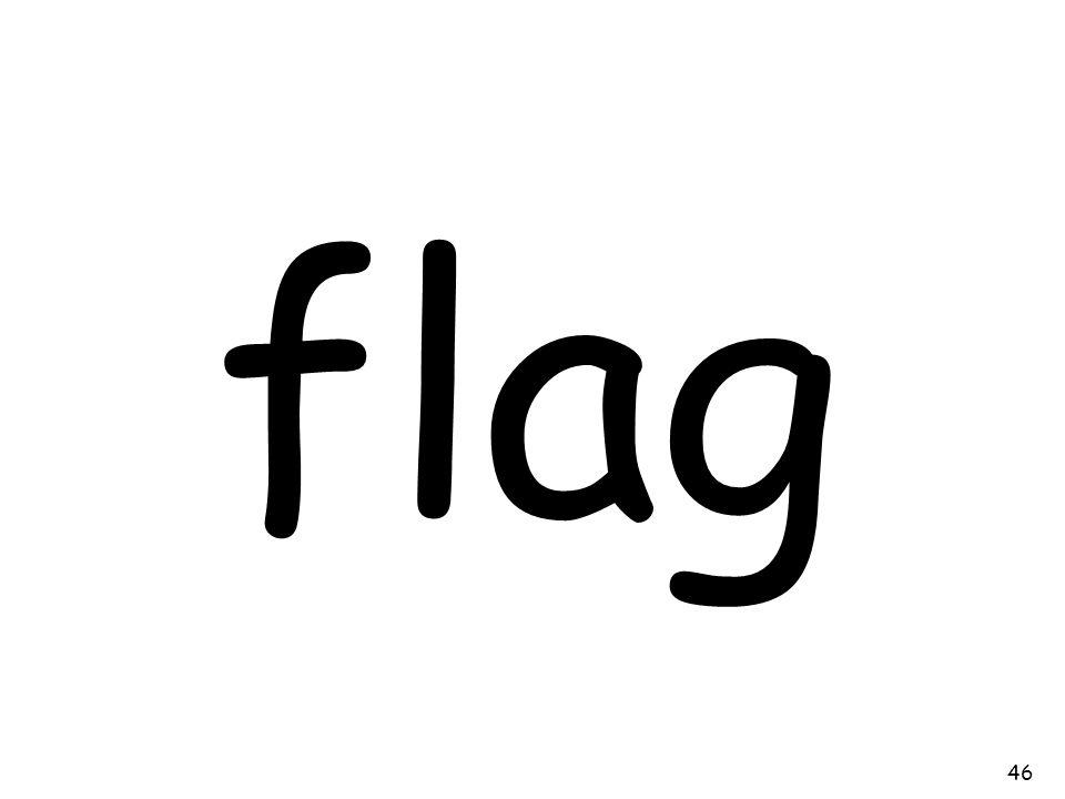 flag 46