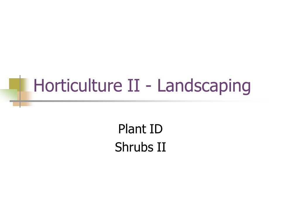Horticulture II - Landscaping Plant ID Shrubs II