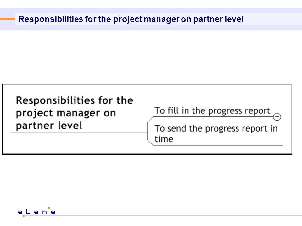 Responsibilities for the project manager on partner level