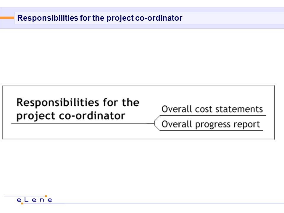 Responsibilities for the project co-ordinator