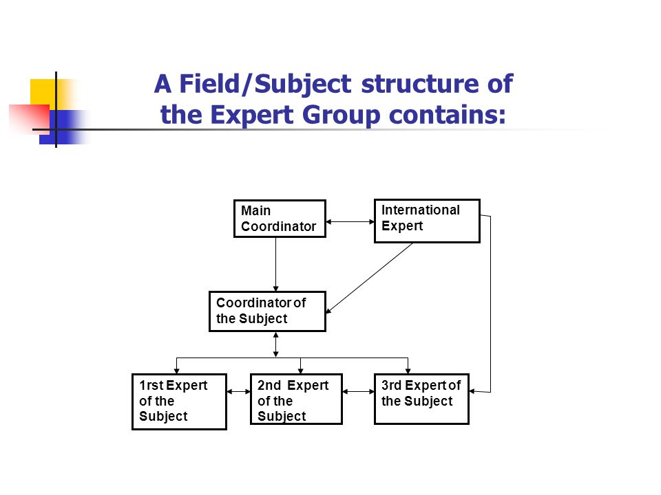 Main Coordinator International Expert Coordinator of the Subject 1rst Expert of the Subject 2nd Expert of the Subject 3rd Expert of the Subject A Field/Subject structure of the Expert Group contains: