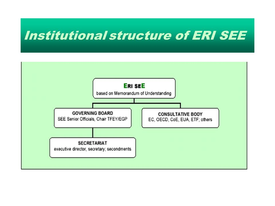 Institutional structure of ERI SEE