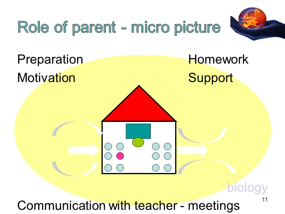 PreparationHomework MotivationSupport biology Communication with teacher - meetings 11