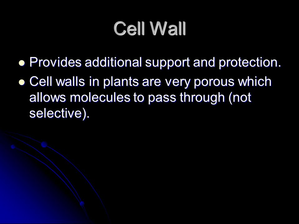 Cell Wall Provides additional support and protection. Provides additional support and protection. Cell walls in plants are very porous which allows mo