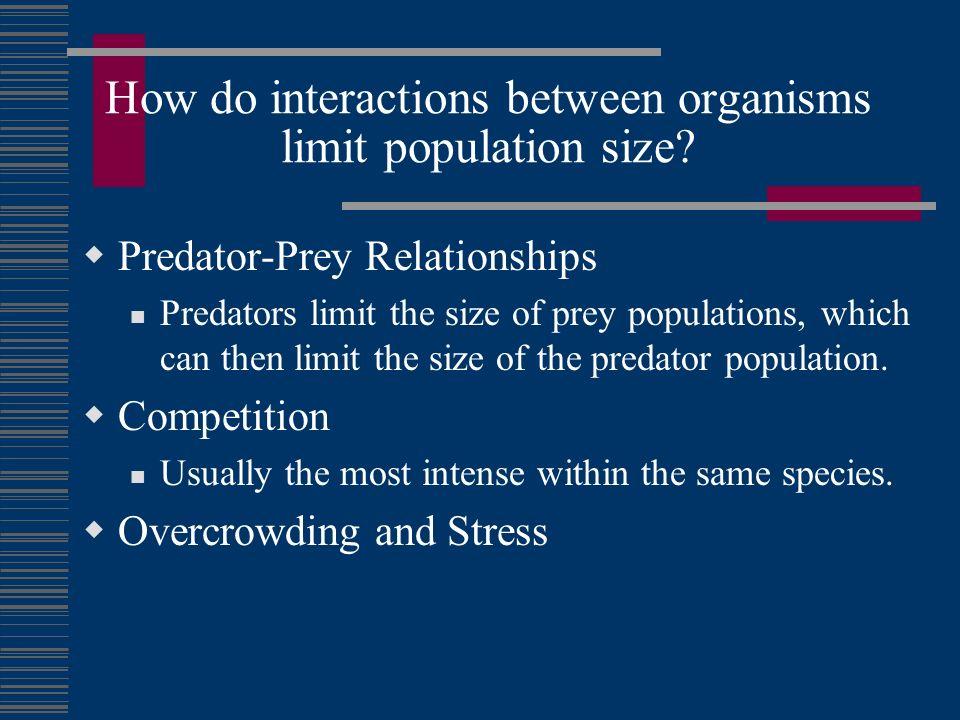 How do interactions between organisms limit population size? Predator-Prey Relationships Predators limit the size of prey populations, which can then