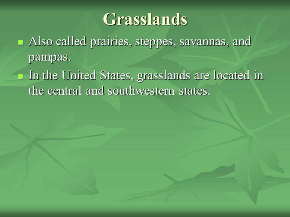 Grasslands Also called prairies, steppes, savannas, and pampas.