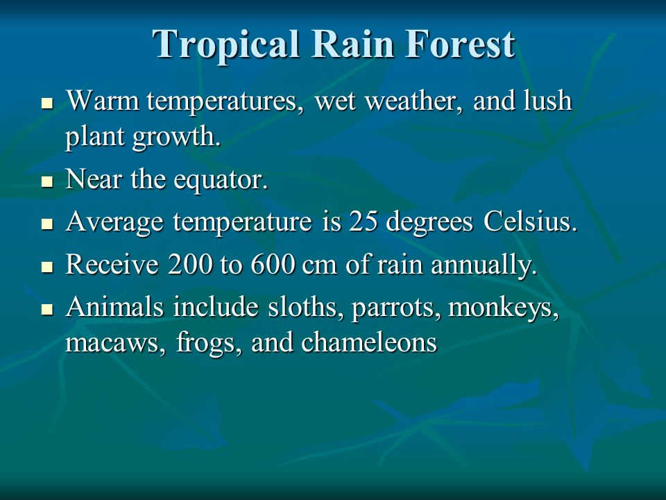 Tropical Rain Forest Warm temperatures, wet weather, and lush plant growth. Warm temperatures, wet weather, and lush plant growth. Near the equator. N