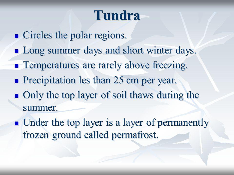 Tundra Circles the polar regions. Circles the polar regions. Long summer days and short winter days. Long summer days and short winter days. Temperatu