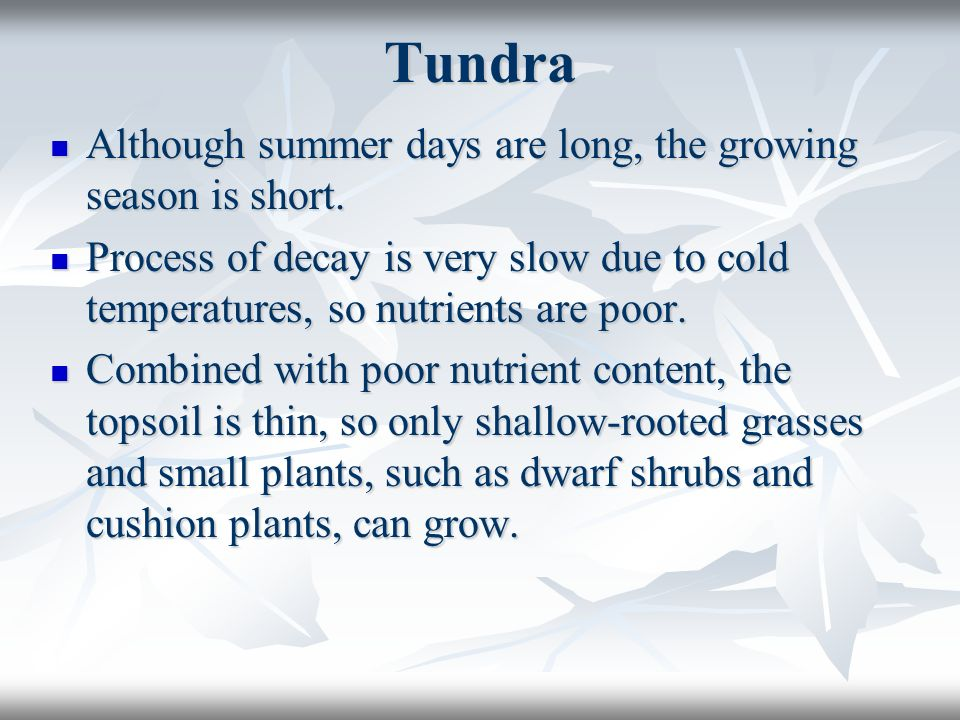 Tundra Although summer days are long, the growing season is short. Although summer days are long, the growing season is short. Process of decay is ver